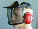 Peltor Helmkombination:   Peltor Helmkombinationen bieten effektiven Schutz für Augen, Ohren und Gesic
